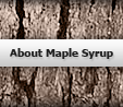 About Maple Syrup